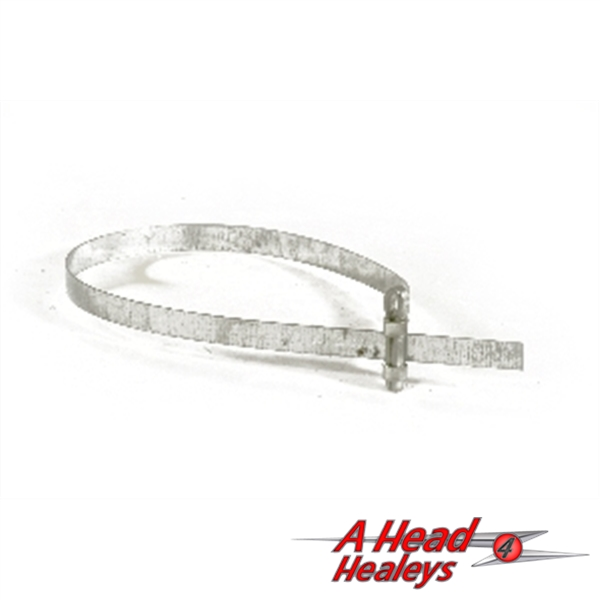 -STRIP - BUCKLE CLIP - TRUNKING